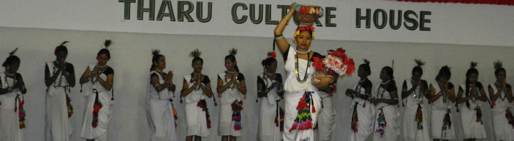 Tharu Cultural Dance show