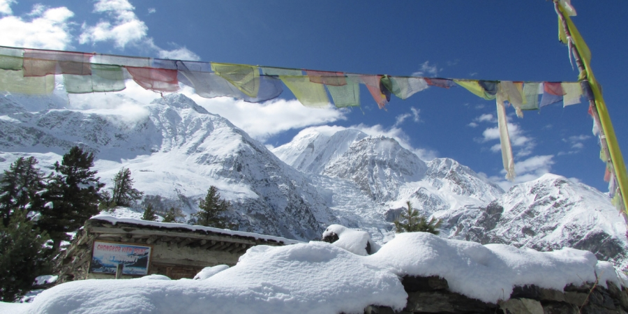 Why you should book Nepal trip with Nepali local tour operator – Customized Nepal trip within your budget