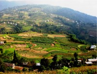 Scenic cultivated land during tour