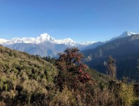 Dhaulagiri and other mountain view from Poonhill