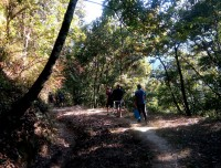 Hiking inside Shivapuri National park