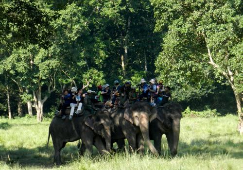2 Nights 3 Days Chitwan National Park Tour